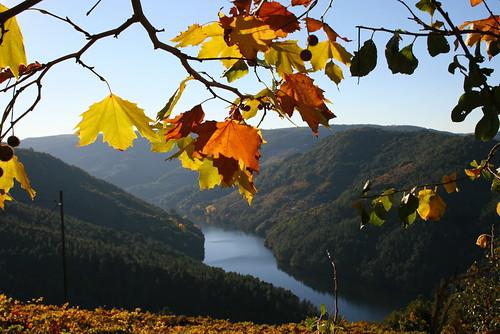Outono na Ribeira Sacra - A Cova