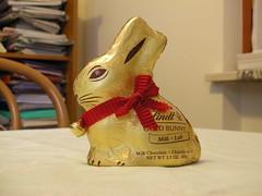 Gold Bunny - Su Flickr