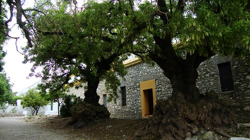 Bellassombras del Castillo de Gigonza