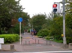 Bicycle guard