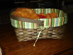 Roving/Project Basket