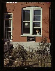[Row house or school(?), Washington, D.C.] (LOC)
