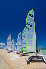 Yachts on Chelsea Beach