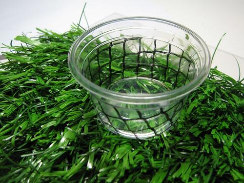 net pattern cup