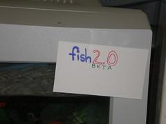 fish 2.0 (Beta) #2