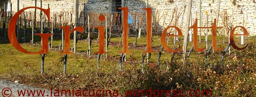 grillette2_redc2008_0708