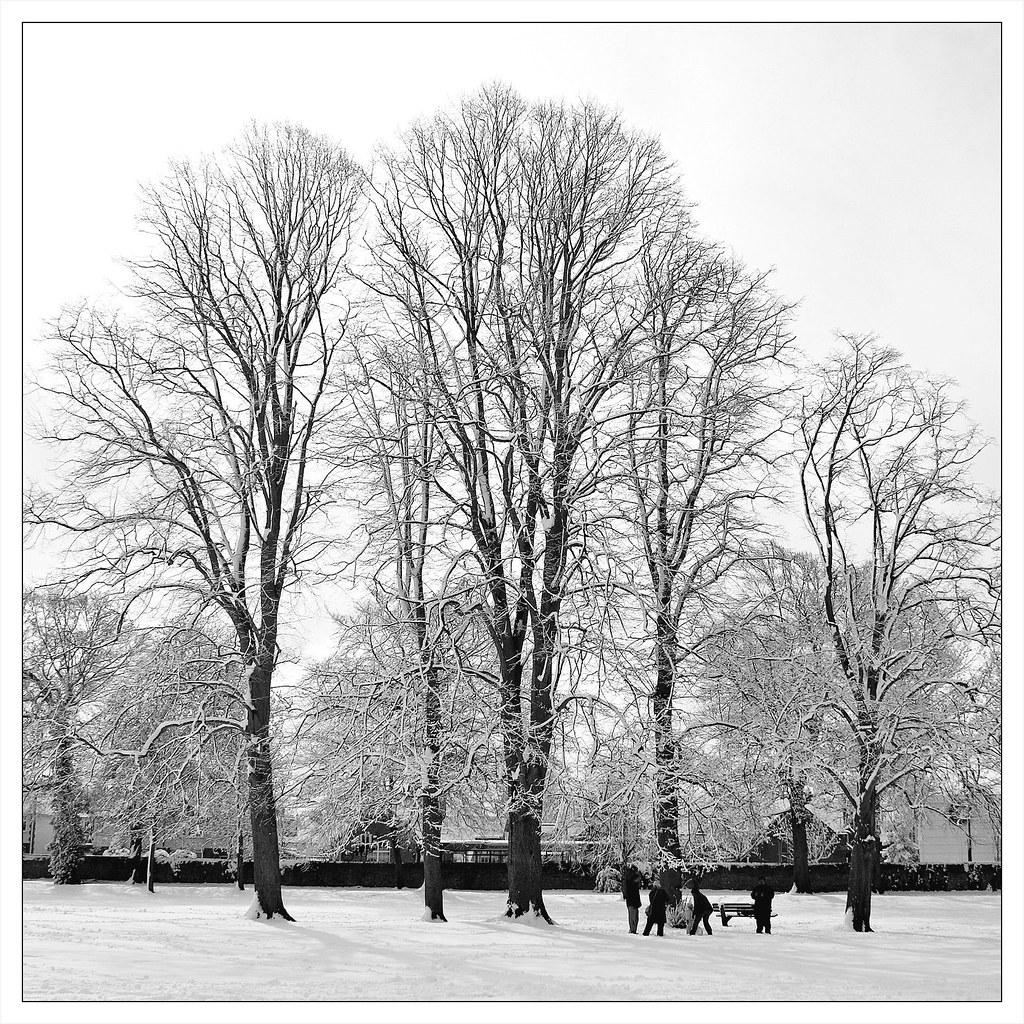Bury Knowle Park, April 2008