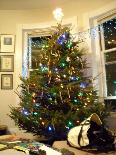 Xmas Tree 2007 2