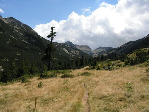 Долината на река Валявица и Мозговишката порта в далечината