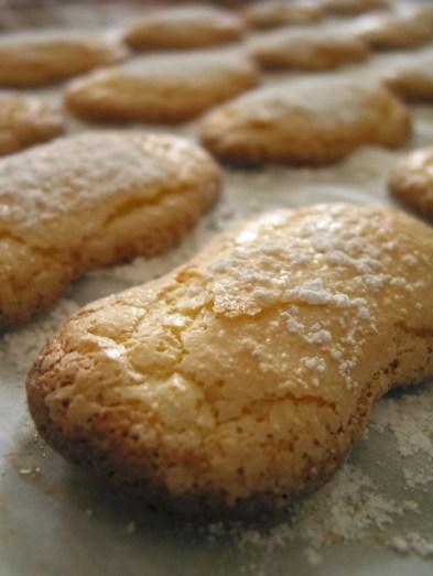 Biscotti di Fonni - savoiardi sardi - Copyright Tutti i diritti riservati a comidademama
