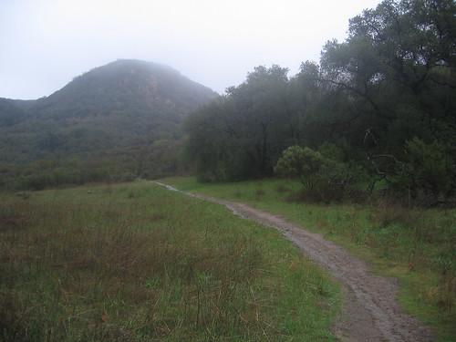 Stunt High Trail 07