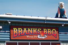 Branks' Pig