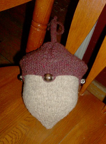 Little Knitted Acorn Project Bag