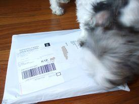 kp envelope wembley