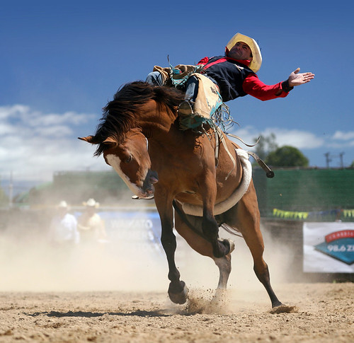 TWO CHAMPIONS AT THE RODEO