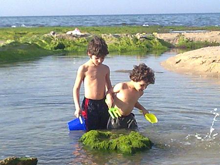 חוף פלמחים, גרסת הילדים