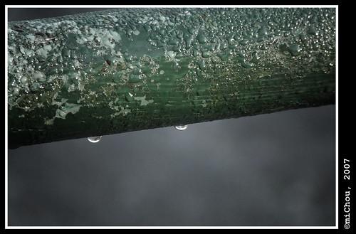Green drop