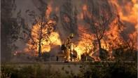 Incendies en Californie le 23 octobre (Photo: Stoogelover via Flickr)