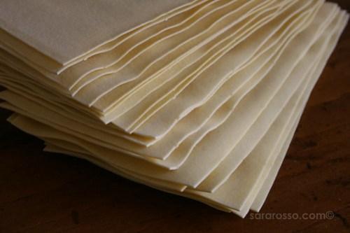 Lasagna Bolognese pasta sheets