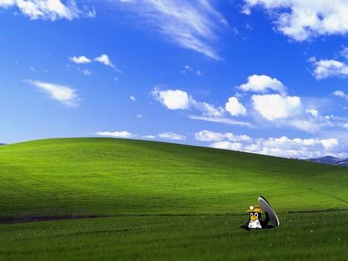 Hello Windows...