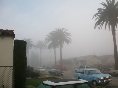My foggy street - northeast