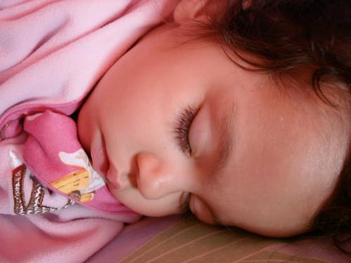 monkey sleeps 2