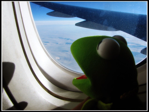 photo of kermit the frog