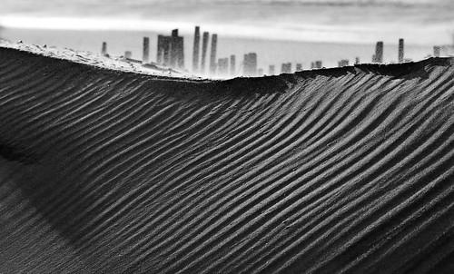 Zandvoort dune