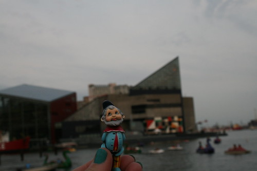 Roamy with Aquarium behind him