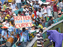 Indian Cricket Fan