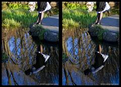 creek-060830-159