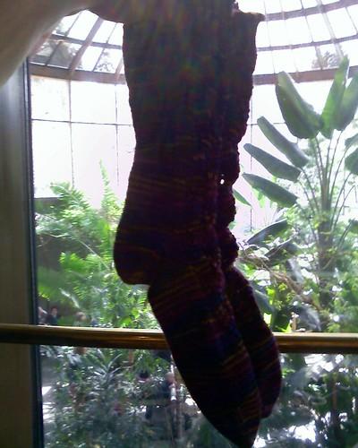 Casbah socks