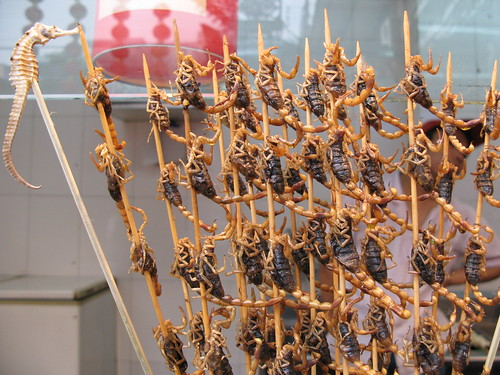 seahorse and scorpions on sticks