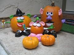 Our pumpkin family