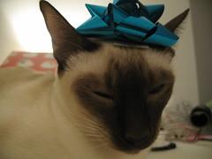 xmas wrapping 071