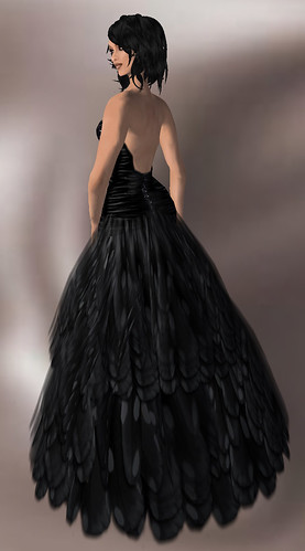 feathers2_005.bmp
