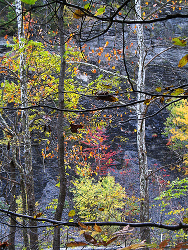 fall color on taughannock falls walk