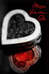 Happy Valentine's Day♥♥♥