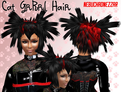 NDN - CATGRRRL Hair : Hair Fair 2009 Auction Hair Prize