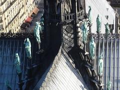 Notre Dame (50)