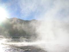 Steaming Geysers