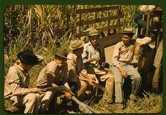 Sugar cane workers resting, Rio Piedras, Puert...