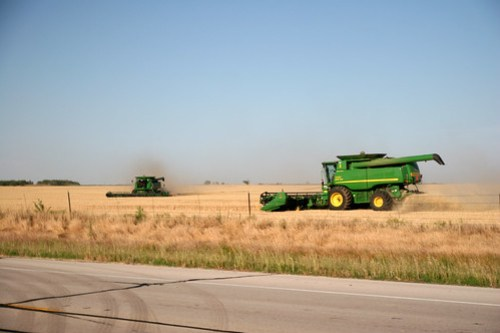 One combine opens up a terrace while the other heads round the field.