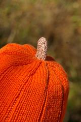 knitted pumpkin stem