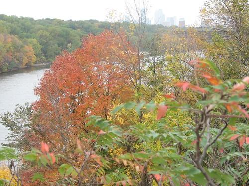 Mississippi River 2007