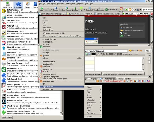 Gellule Emil IE (Edition) : Firefox 3 Beta 5 : Watcher Friendly, Usb Friendly Version 8 ;o)
