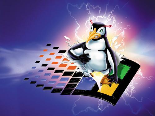 Linux WIndows penguin