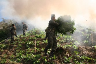 Mexico's war on drugs