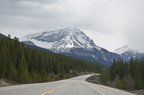Driving one of the most scenic highways in the world - Icefields Parkway