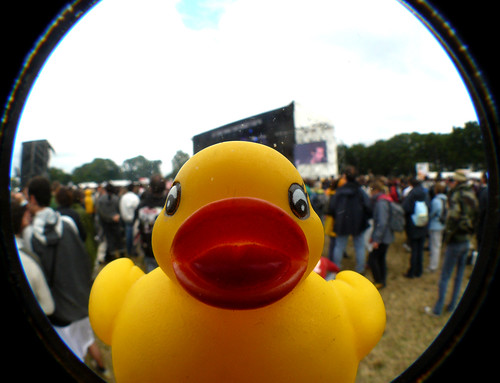 Une petite photo souvenir du passage de Bobby, le canard teuffeur, aux Vieilles Charrues 09'.